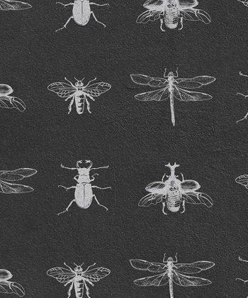 tapet soft bugs