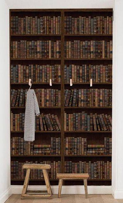 tapet bibliotecă library style