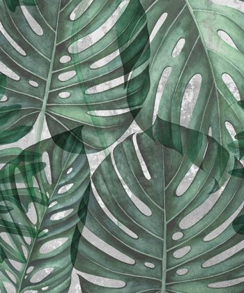 green philodendron tapet living model